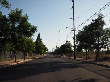 8/19 - Street